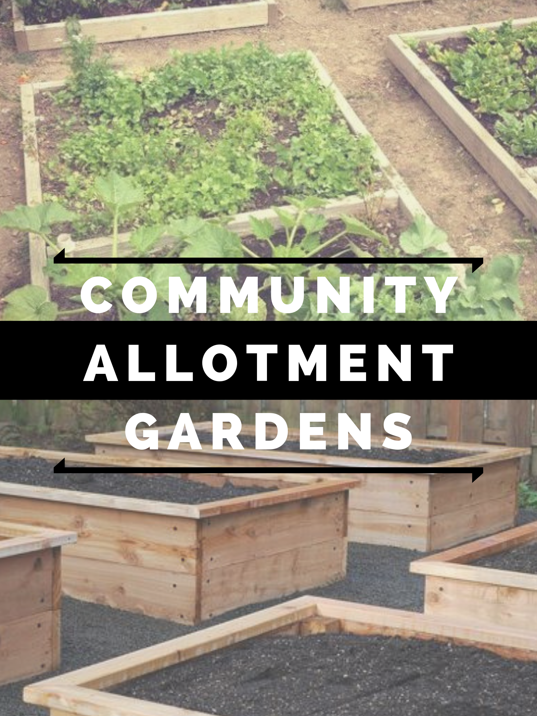 Community Allotment Gardens