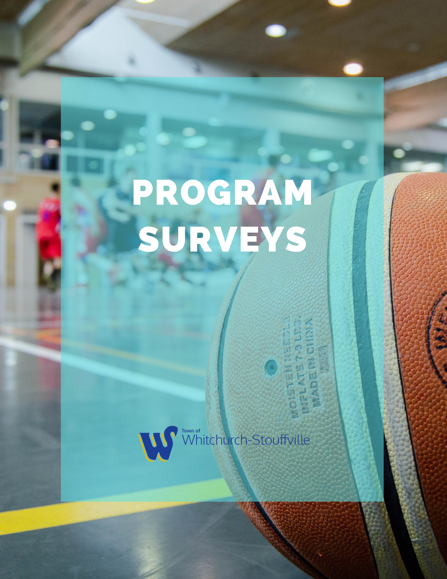 Program Surveys
