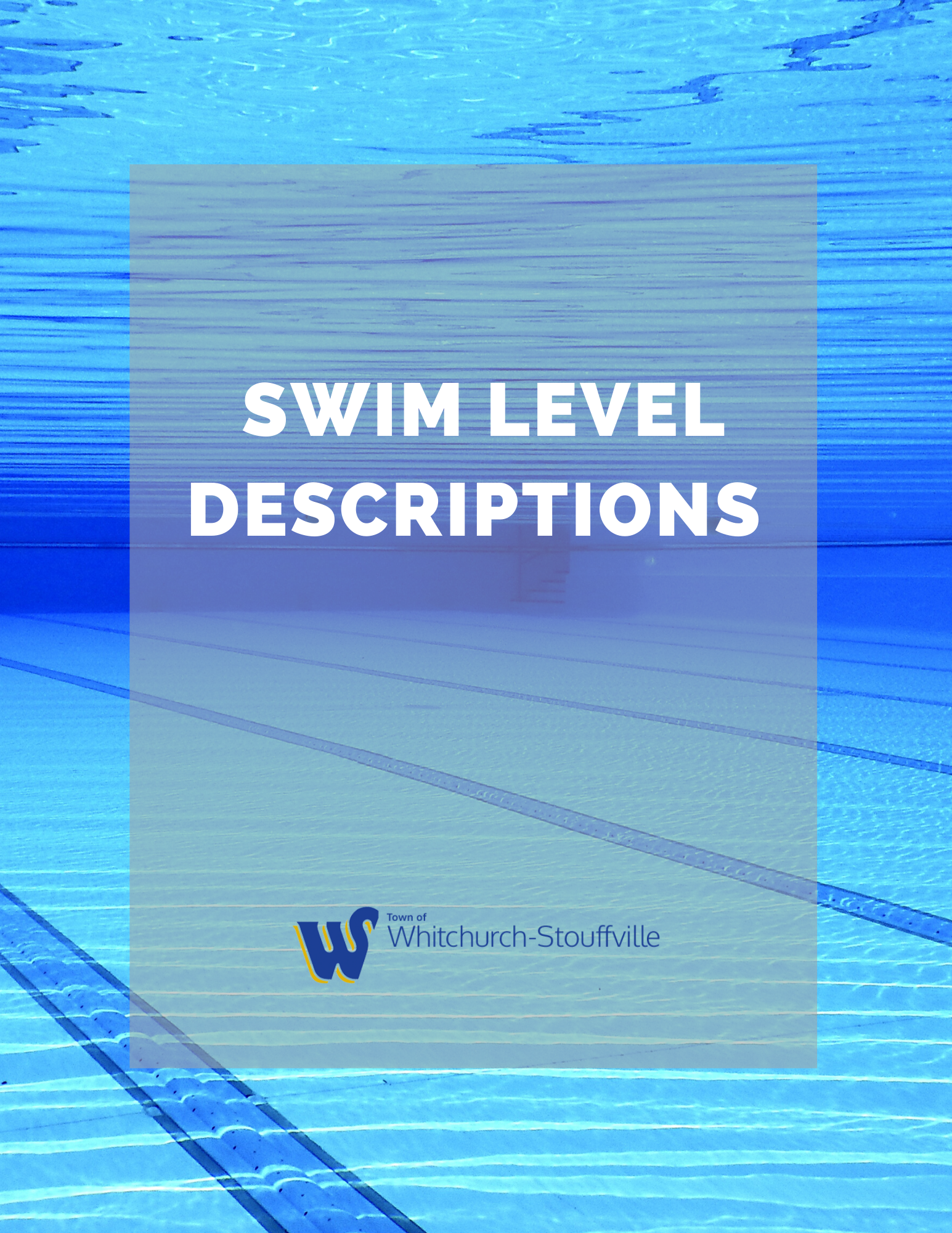 Swim Level Descriptions