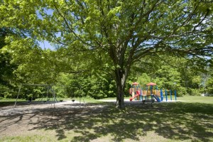 Ballantrae Park with swings and playground